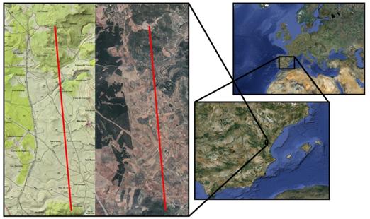 Cartografia Paterna